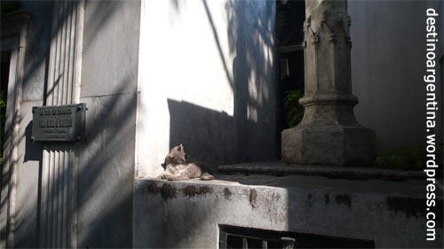 Friedhof in Ricoleta Buenos Aires 6