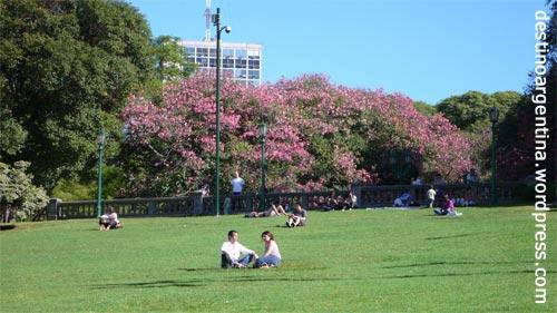 Grünanlage der Plaza San Martin in Buenos Aires
